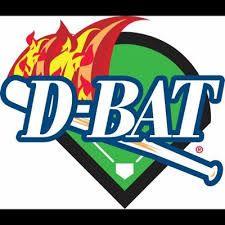 D Bat Interior Google Search Softball Camp Baseball Camp Sports Training Facility