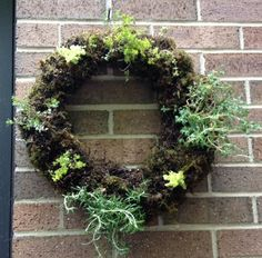 Learn how to make your own living herbal wreath. It's easy to do and makes a great gift. Any low growing plant will work.