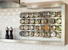 A visual spice display mounted beside the stove not only offers easy-to-see inventory, but also livens up a neutral backsplash. | Photographer: Kim Christie | Designer: David Zacharko Architect