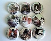 A set of 6 cats with mustaches button magnet set / 161. $7.00, via Etsy.