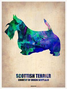 size: Art Print: Scottish Terrier Poster Art Print by NaxArt : Travel White Dogs, Westies, Little Dogs, Dog Art, Dog Love, Animals And Pets, Moose Art, Illustration Art, Art Prints