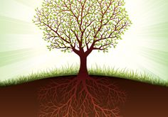 The tree: a learner is much more than what is visible from the outside. Also, you have to look for soil that matches to you as a learner, where you can grow.  From Thieme Hennis  (@Jane Bozarth Learning/Teaching Metaphors)