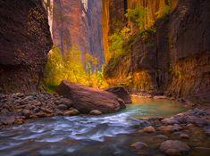 Amazing Paradise by Marc Adamus, Virgin River canyon, Zion National Park