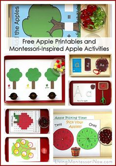 Free Apple Printables and Montessori-Inspired Apple Activities