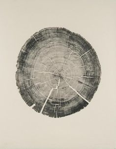 Cedar Pole - Bryan Nash Gill