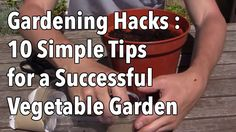 Growing your own food successfully is a constant process of learning which techniques work best for you and your plants.  Often simple bits of advice from other gardeners can help provide shortcuts to achieving success in your garden.  In this short video we demonstrate ten quick tips handed dow