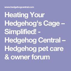 Heating Your Hedgehog's Cage – Simplified! - Heating Your Hedgehog's Cage – Simplified! – Hedgehog Central – Hedgehog pet care & owner f - Hedgehog Supplies, Hedgehog Care, Pet Corner, Homemade Dog Food, Dog Agility, Healthy Dog Treats, Cute Little Animals, Dog Training Tips, Dog Care