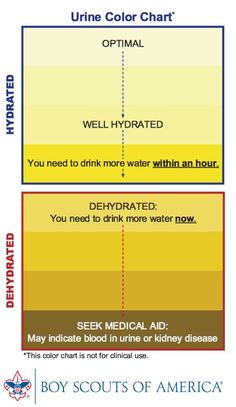 Urine color chart. To show healthy #water consumption levels