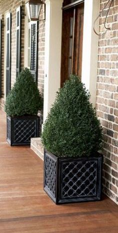 Beautiful Front Door Planter Ideas 38 The walkway, porch and front door are the first things that visitors see and they may be appalled, bored or … Front Door Entrance, House Front Door, Front Entrances, House Entrance, Front Door Decor, Porch Topiary, Front Porch Plants, Front Porches, Beautiful Front Doors