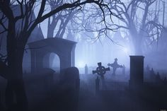 To find the origin of Halloween, you have to look to the festival of Samhain in Ireland's Celtic past. Description from pinterest.com. I searched for this on bing.com/images