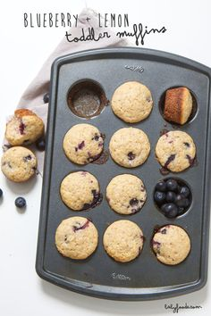 These healthy Blueberry + Lemon toddler muffins are going to be a hit for the entire family!