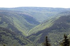 These are the Cape Breton Highlands.  I took this picture from a look-off on MacKenzie Mountain on the Cabot Trail.