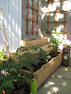 tiered garden for patio Herb Garden, Vegetable Garden, Landscape Design, Garden Design, Tiered Garden, Raised Beds, The Great Outdoors, Garden Landscaping, Patio Ideas