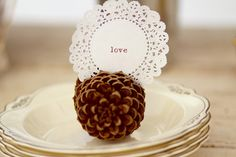Perfect seating card - ties in with the pine cones I'd like to include in the center pieces and maybe even an accent of pine cones in my bouquet depending on how rustic I decide.