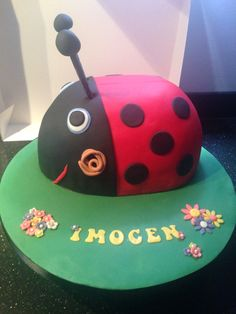 Gaston the Ladybird cake