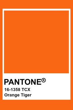 Witty Art Furniture That Will Transition With You To Fall 2019 Orange Color Palettes, Pantone Colour Palettes, Colour Pallete, Colour Schemes, Pantone Color, Orange Palette, Orange Color Shades, Color Combinations, Paleta Pantone