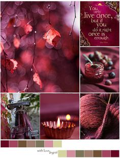 moments of time ♥ Marsala, Color Of Life, Color Of The Year, Color Collage, Mood Colors, Beautiful Collage, Autumn Cozy, Colour Board, Spring Garden