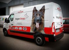 Recreational Vehicles, Van, Pets, Camper Van, Vans, Rv Camping, Camper