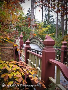 Crim Dell Bridge, College of William & Mary, Williamsburg, VA.  Photo:  magikalfolk, via Flickr