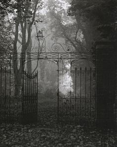 Edwin Smith Gates, Hardwich House Park Bury St Edmunds, Suffolk, 1955 From Evocations of Place: The Photography of Edwin Smith Imagen Natural, Bury St Edmunds, Dark Photography, Dark Places, Haunted Places, Haunted Houses, Dark Fantasy, Belle Photo, Dark Art
