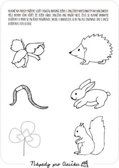 Animal Crafts For Kids, Step Kids, Forest Animals, Pre School, Worksheets, Activities For Kids, Autumn, Print Coloring Pages, Tatoo