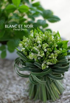 pretty white and green wedding bouquet Hand Flowers, Green Flowers, Beautiful Flowers, Floral Bouquets, Wedding Bouquets, Wedding Flowers, Green Wedding, Outdoor Wedding Decorations, Flower Decorations