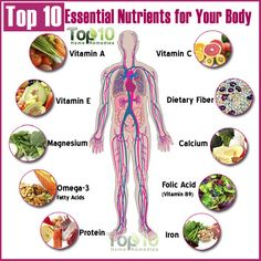 essential nutrients for human body