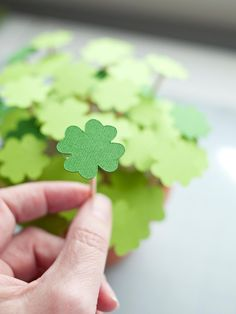 How to Make Potted Paper Clovers | Holiday Decorating and Entertaining Ideas & How-Tos | HGTV