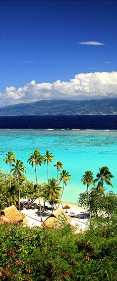 Moorea, French Polynesia - Explore the World with Travel Nerd Nici, one Country at a Time. http://www.TravelNerdNici.com