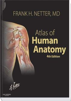 My Absolute Favorite Anatomy Book By Frank Netter Hand Drawn Images