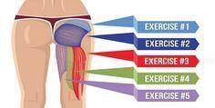Stare seduti tutto il giorno può rendere i glutei poco tonici e passivi alla forza di gravità, questo è il motivo per cui hai bisogno di esercizi efficaci per rassodare il tuo sedere. È importante non trascurare questi muscoli dal momento che svolgono un ruolo vitale nel supportare la forza nelle gambe, sostenere la colonna vertebrale e stabilizzare il bacino. In pratica, rafforzando i glutei migliorerai anche la postura, il che è vantaggioso per la corsa, gli sport ad alta intensità e molto…