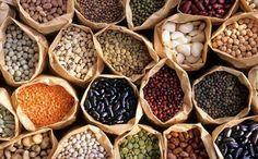 La bióloga Soledad Saburido impulsa desde Guanajuato la primera biblioteca de semillas de México para preservar la diversidad y ayudar a las comunidades aisladas a cultivarlas. Muchos de los alimentos que hoy consumimos se los debemos a las comunidad