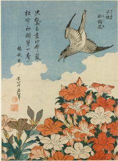Title:子規 杜鵑花(ほととぎす さつき) Cuckoo and Azaleas (Hototogisu, satsuki), from an untitled series known as Small Flowers/li> Artist:葛飾北斎 Katsushika Hokusai