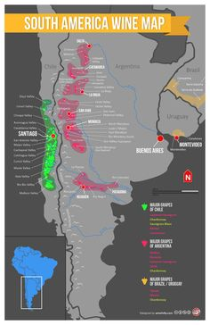 South America Wine Map: Carmenere, Malbec, et cetera Mendoza, Wine Facts, Wine Folly, Chateauneuf Du Pape, Wine Education, Wine Guide, In Vino Veritas, Wine And Beer, Boot Camp