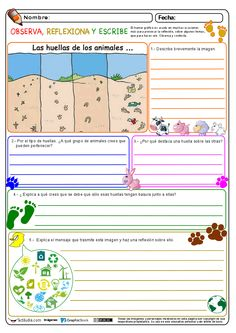 Observa, reflexiona y escribe 03 Más Elementary Spanish, Ap Spanish, Spanish Classroom, Sequencing Words, Vocabulary Instruction, Spanish Teaching Resources, 4th Grade Writing, Grammar Book, Social Studies Classroom