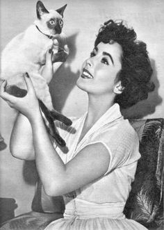 Elizabeth Taylor and her cat--decaying hollywood mansion's