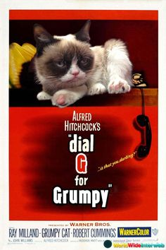 Possible Grumpy Cat Movies