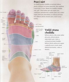 Reflexology Massage, Foot Massage, Holistic Medicine, Healthy Lifestyle Tips, Body, Diabetes, Health Fitness, Reiki, Workout