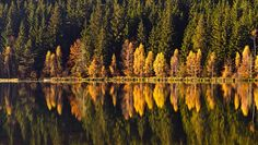 Lake St Ana How Beautiful, Autumn Leaves, Mountains, Landscape, Country, Amazing, Travel, Inspiration, Biblical Inspiration