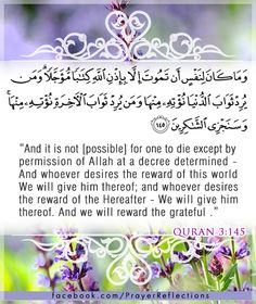 Inspiring Verses from Quran - And it is not [possible] for one to die except by permission of Allah at a decree determined. And whoever desires the reward of this world - We will give him thereof; and whoever desires the reward of the Hereafter - We will give him thereof. And we will reward the grateful. Quran 3:145
