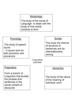 36 Best Linguistics Images Morphology Linguistics Word