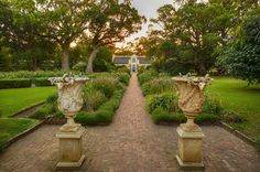1 of Vergelegen Estate- My favorite winery in Somerset West South Africa Provinces Of South Africa, South Afrika, South African Wine, Somerset West, Girls World, Africa Travel, Beautiful Space, The World's Greatest, Wonders Of The World
