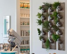 Cool indoor Herb Garden! Some day I'd love to have one of these in my kitchen!