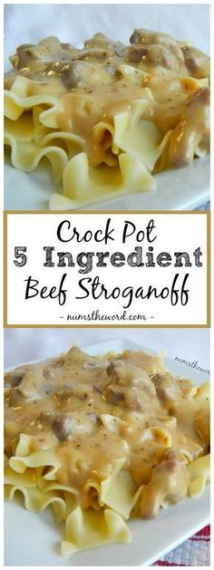 *VIDEO* 5 Ingredient Crock Pot Beef Stroganoff. It's a quick and tasty meal any family will enjoy! Makes a perfect freezer meal! #crockpot #slowcooker #maindish #dinner #beef #stewbeef #stewmeat #stroganoff #beefstroganoff #easystroganoff #eggnoodles #recipe #video #numstheword