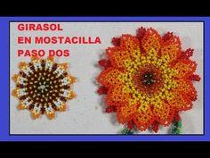 GIRASOL EN MOSTACILLA//5 VIDEOS - YouTube