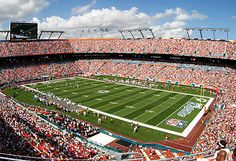 #1 Sports Attraction in South FL - Miami Dolphins Sun Life Stadium Florida | Colorfulplaces.com #miami #dolphins #travelguide
