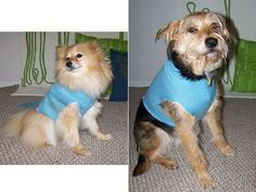 Learn how to turn a sweater sleeve into a dog shirt with this photo tutorial from Rain Blanken, DIY Fashion Expert.