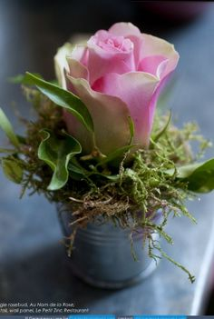 single rose OR annual flower planted in a tiny bucket OR tiny red clay pot.at each place setting (with a larger version as centerpiece) Deco Floral, Arte Floral, Floral Design, Arrangements Ikebana, Floral Arrangements, Fresh Flowers, Pretty Flowers, Colorful Roses, White Flowers