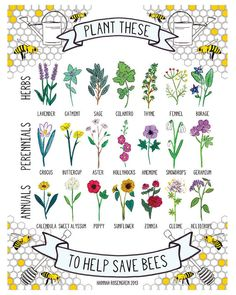 8x10 Plant These to Help Save Bees Print by HannahRosengren, $14.00