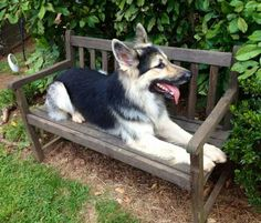 GSD...Just relaxing